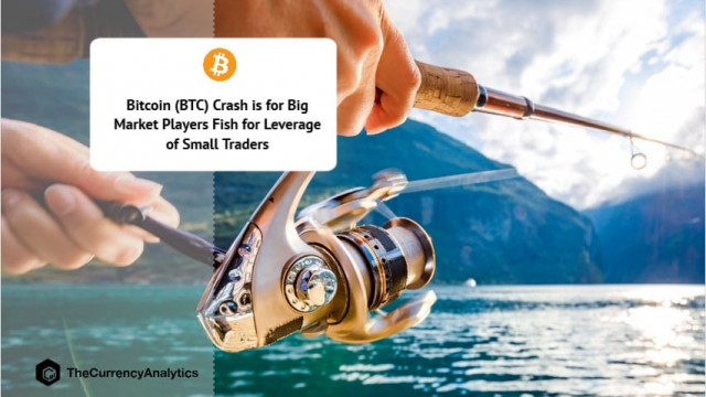 Bitcoin (BTC) Crash is for Big Market Players Fish for Leverage of Small Traders